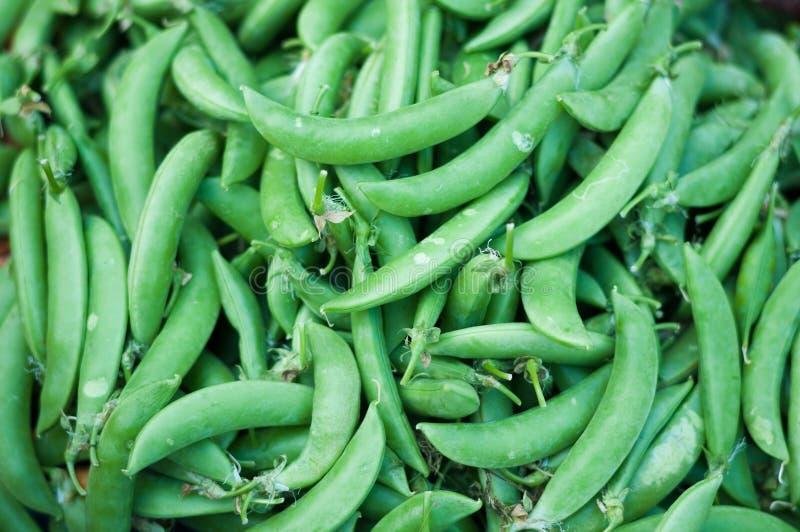 关闭粗糖豆绿色新鲜市场背景, Pisum Sativum 免版税库存照片