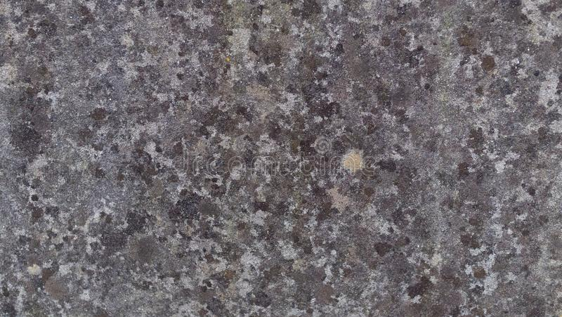 关闭紫色石墙 库存图片