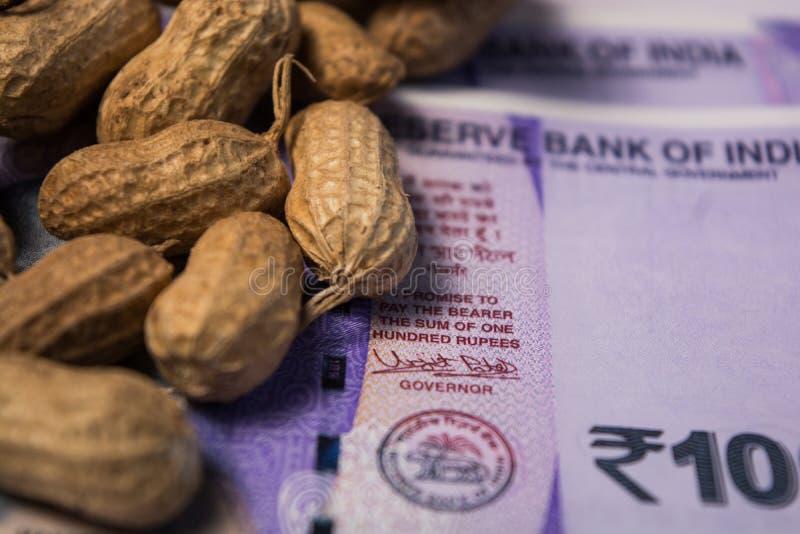 关闭花生或落花生与下面印度货币在被隔绝的背景 库存图片