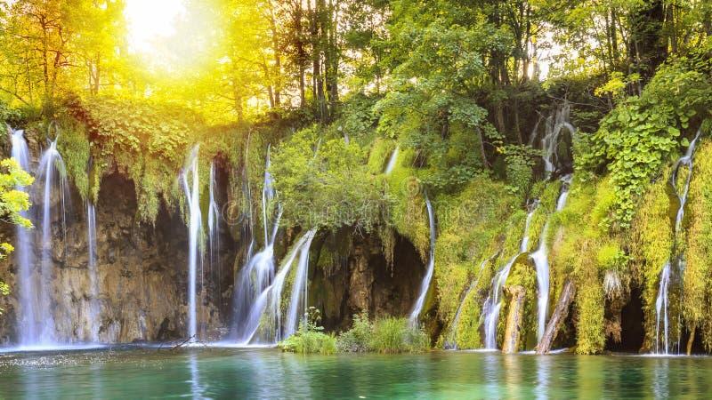 关闭蓝色瀑布在一绿色森林Plitvice湖,克罗地亚 库存照片