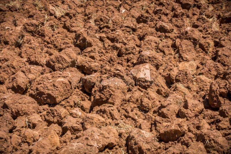关闭被犁的红色土壤,耕地 免版税库存照片