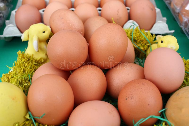 关闭褐色chiken在纸盒箱子的鸡蛋 未加工的新鸡蛋背景 蛋样式墙纸 有鸟的即纸板盘子 免版税库存照片