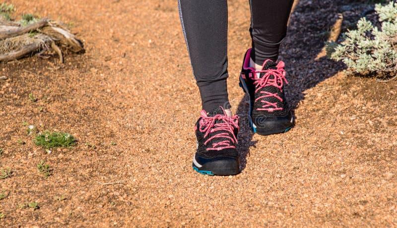 关闭远足起动、鞋子和腿 女孩,步行本质上,国家公园的少妇夫人, 妇女在一岩石tra的远足者腿 免版税库存照片