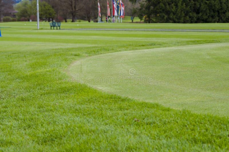 Download 关闭高尔夫球绿色 库存照片. 图片 包括有 绿叶, 陆运, beautifuler, 草甸, 竹子, 庭院 - 72355900