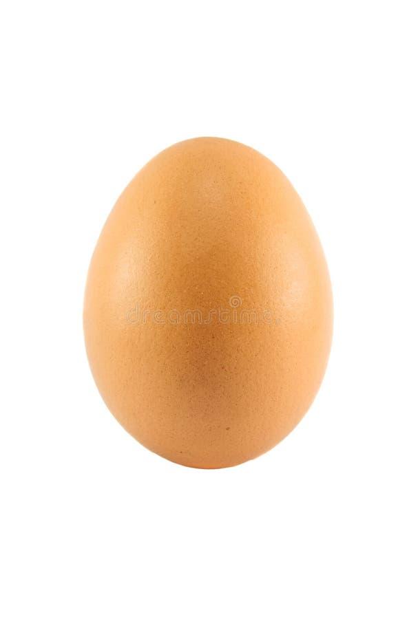 关闭鸡蛋 图库摄影