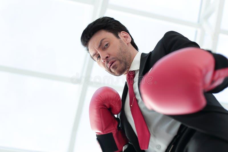 关闭 在红色拳击手套的一个严肃的商人 库存图片