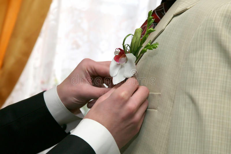 其中每一在新郎的衣服上帮助把花放 库存图片