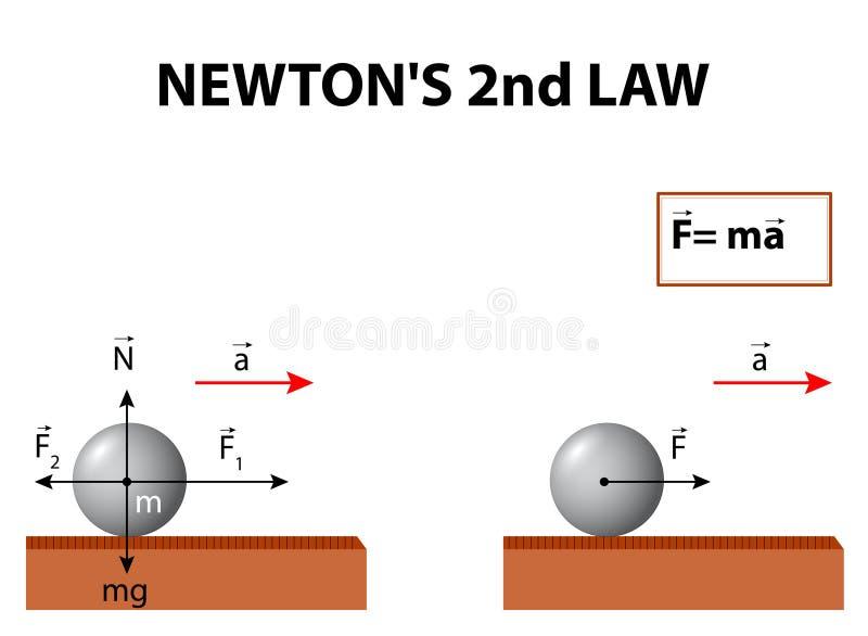 其次牛顿的法律 向量例证