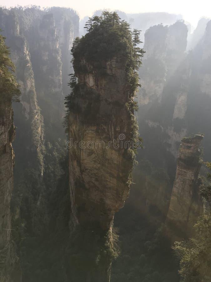 具体化公园张家界山自然 免版税库存照片