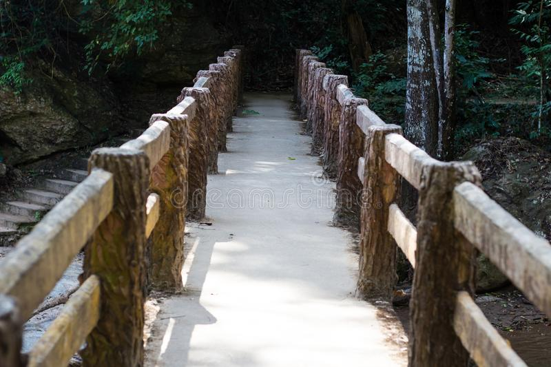 具体桥梁在森林里, 库存照片