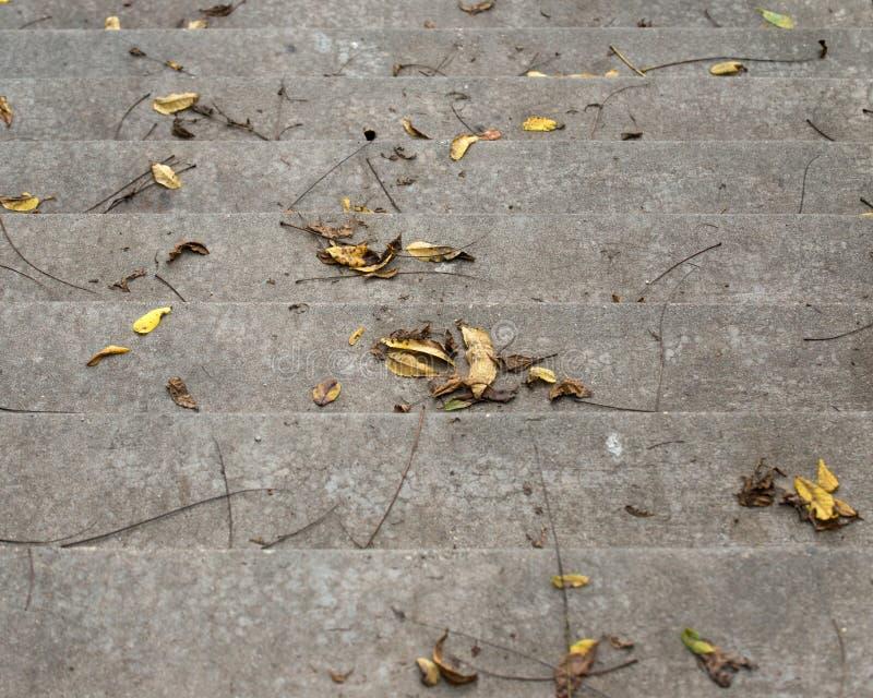 具体楼梯,台阶,步 免版税库存照片