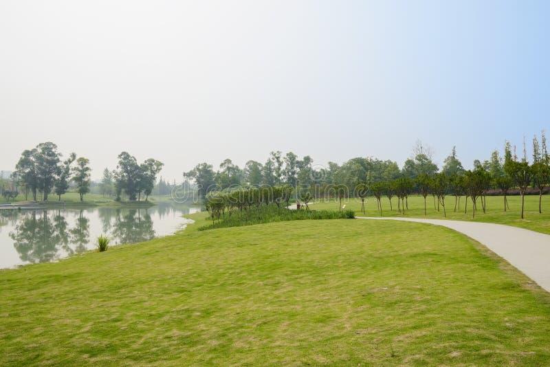 具体道路在湖边草坪在晴朗的夏日 库存图片