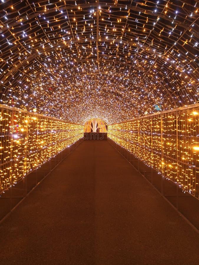 具有交替的暖光和白光的圣诞灯隧道,具有星光夜效 免版税库存图片