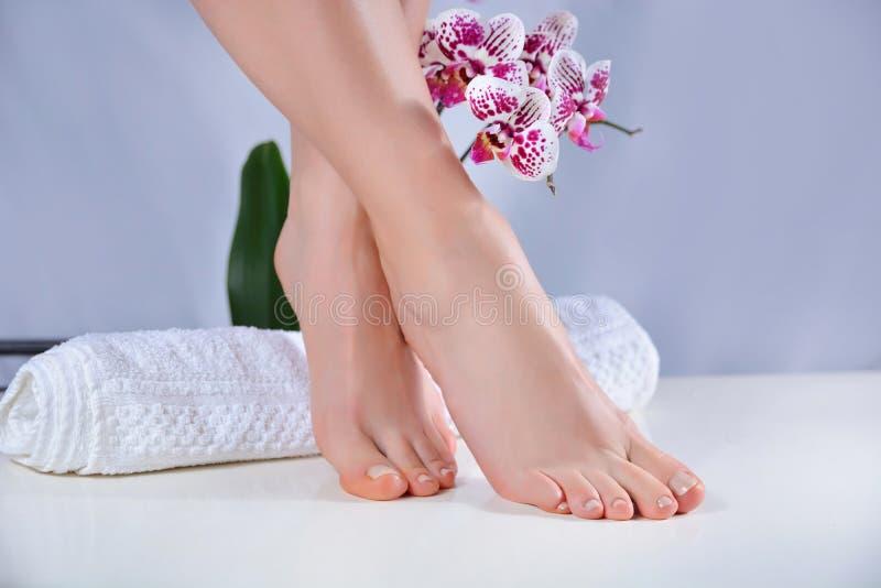 具有天然色彩钉蒂的女足及紫色兰花装饰 图库摄影