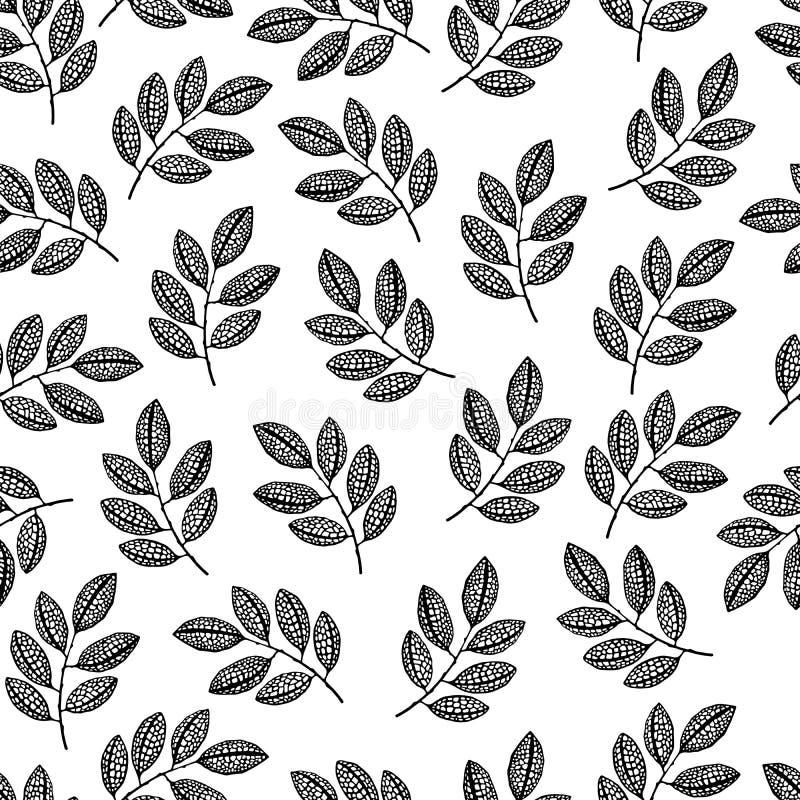 具有枝叶的无缝图案 黑白矢量墙纸 皇族释放例证