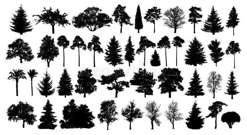 具球果林木被设置的剪影 在白色背景的被隔绝的树 皇族释放例证