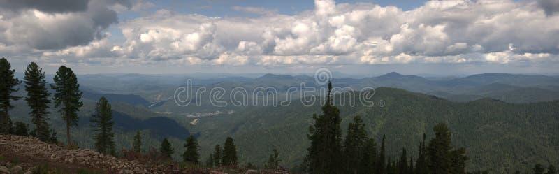 具球果森林全景射击在一天空蔚蓝下的在从山的顶端白色云彩 皇族释放例证
