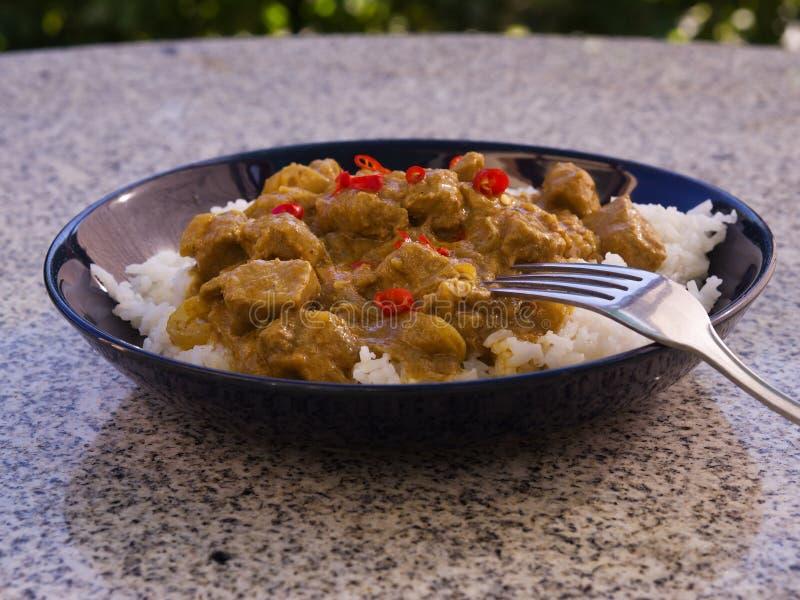 典型的印地安食物热的羊羔咖喱的详细的图片用米和切好的辣椒在深板材服务 免版税库存照片