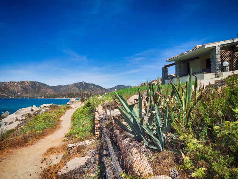 典型的地中海植被组成由灌木和灌木n 库存照片
