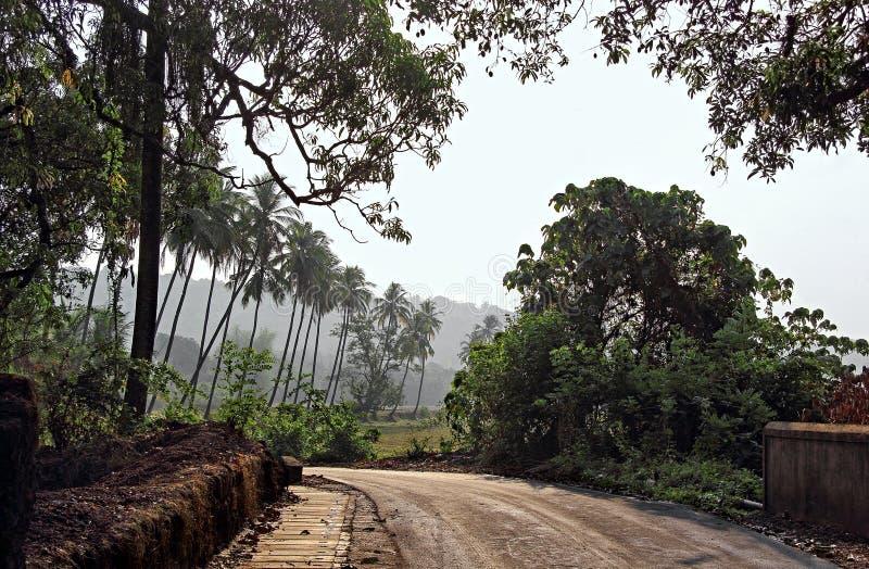 典型的平静的农村场面在果阿 免版税库存图片