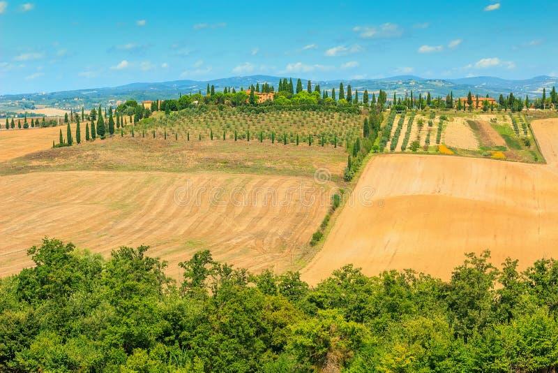 典型的托斯卡纳风景,锡耶纳地区,意大利,欧洲 图库摄影