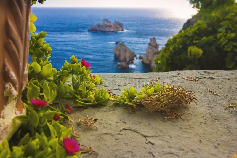 典型的植物和海视图在希腊,科孚岛海岛 库存图片