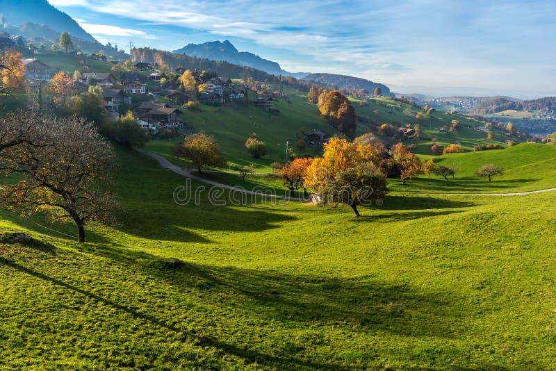 典型的瑞士村庄惊人的秋天视图在烟特勒根附近镇的  图库摄影
