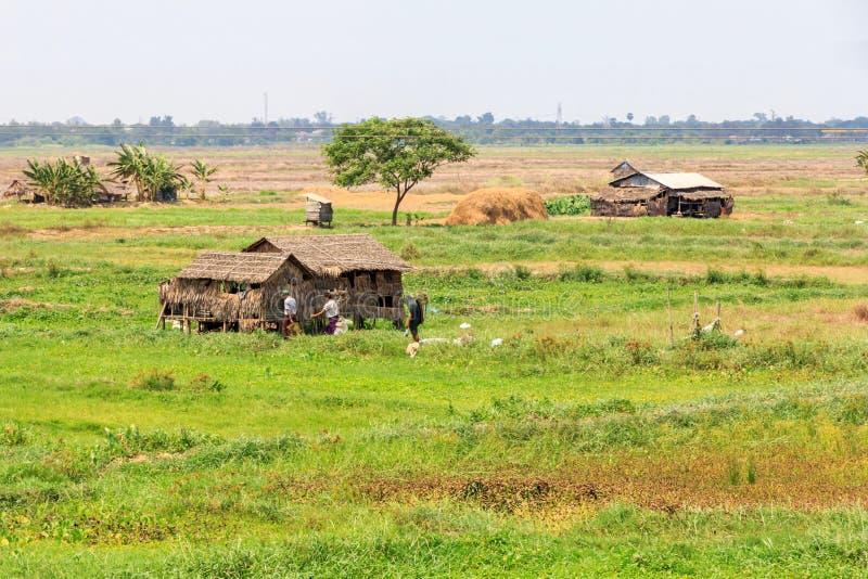 典型的种田的风景 免版税库存图片