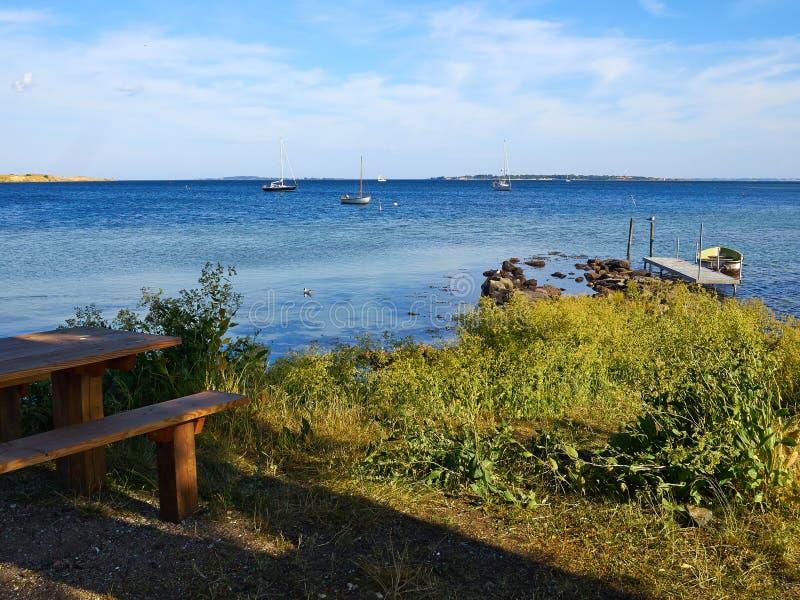 典型的美好的丹麦海岸线风景在夏天 免版税库存照片