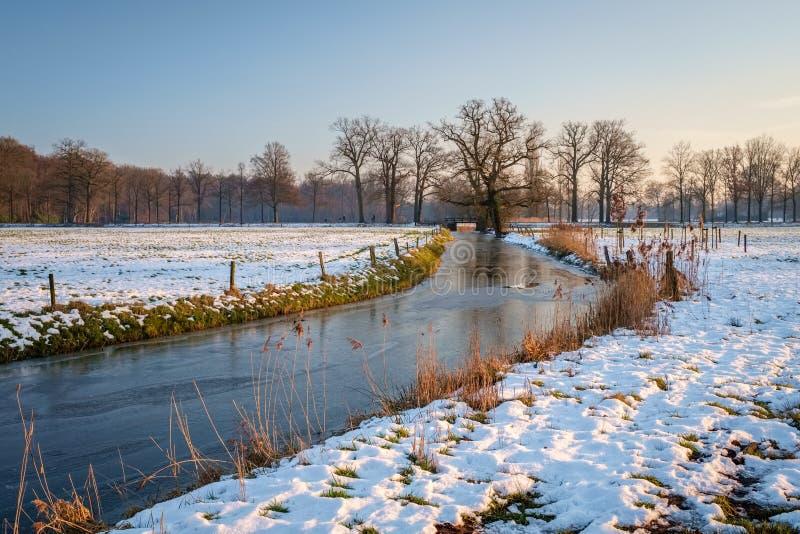 典型的荷兰冬天风景在Delden Twente,上艾瑟尔省附近的1月 库存图片