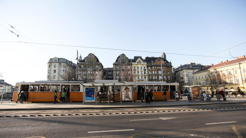 典型的treet在布达佩斯 库存图片