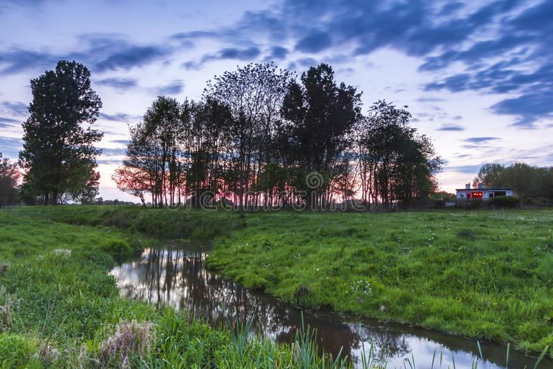 典型荷兰语的横向 横跨一个绿色草甸和一个小屋的小水小河 库存照片