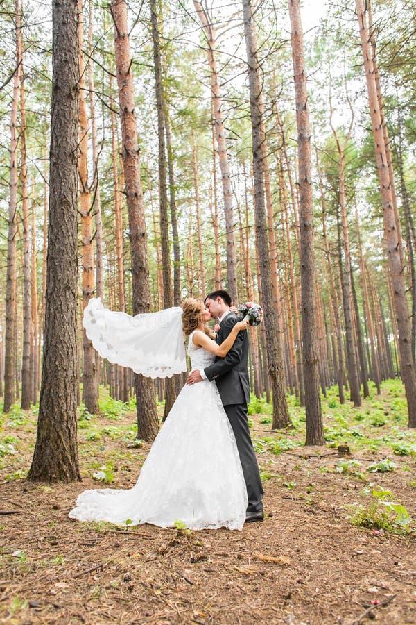 典雅的一起摆在户外在一婚礼之日的新娘和新郎 免版税库存照片