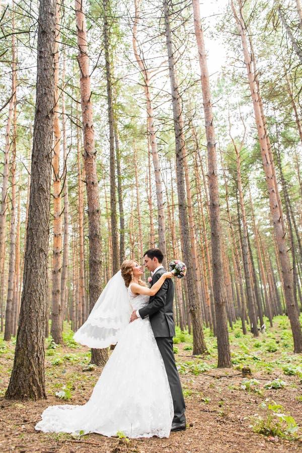 典雅的一起摆在户外在一婚礼之日的新娘和新郎 库存图片