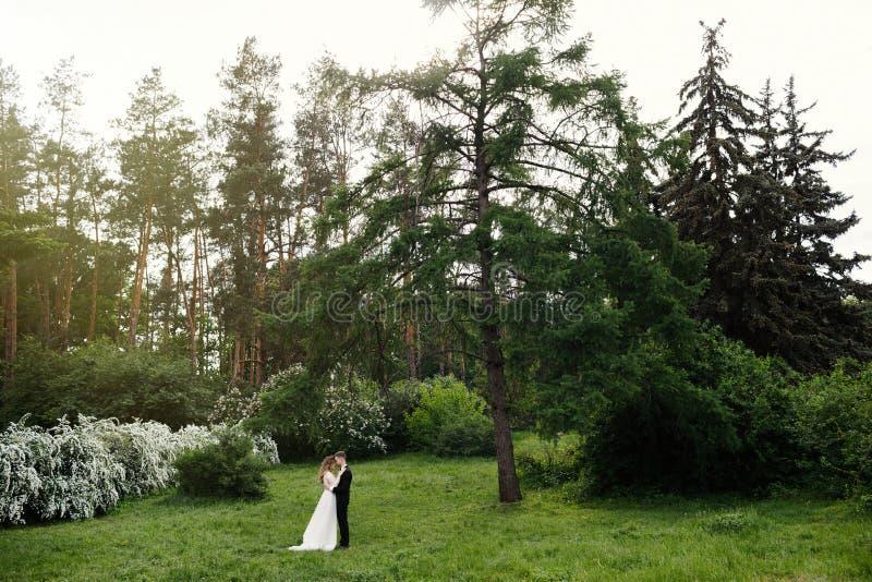 典雅的华美的摆在公园的新娘和时髦的新郎 免版税库存照片