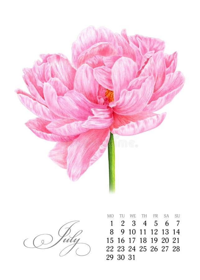 典雅的可印的日历2019年 7月 水彩桃红色牡丹 多汁植物的板材-离开仙人掌、仙人掌和柱仙人掌仙人掌 横幅的模板,笔记本,化妆用品 库存例证