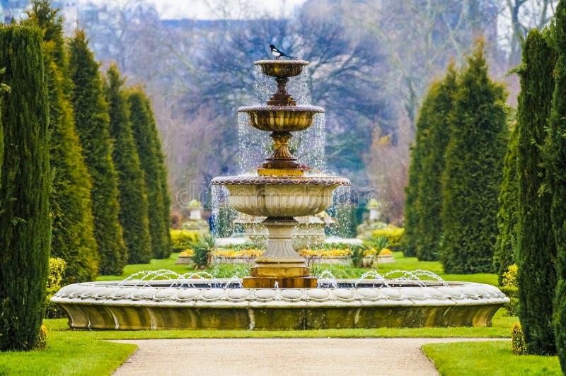 典雅的喷泉用水滴水在摄政公园,伦敦 图库摄影