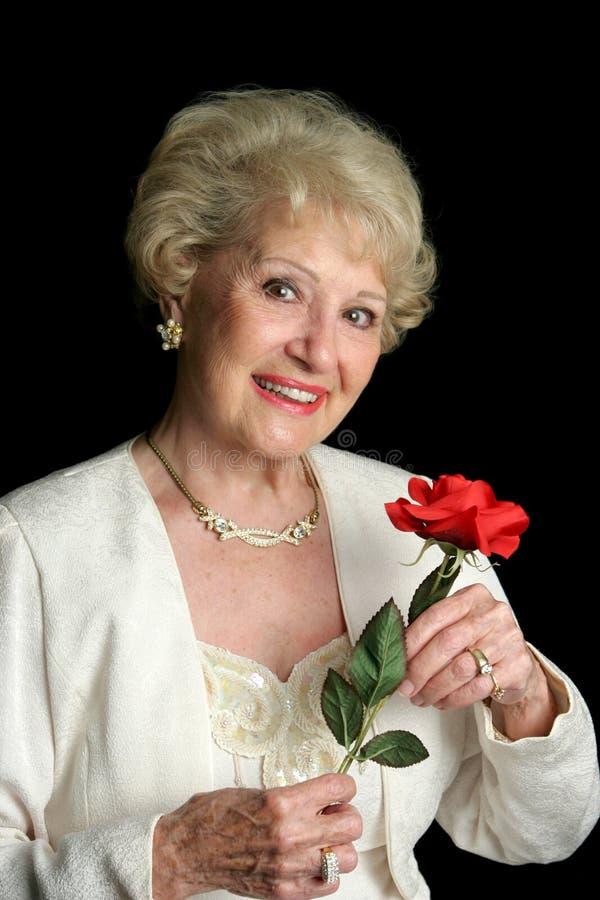 典雅的夫人高级成功 免版税库存照片