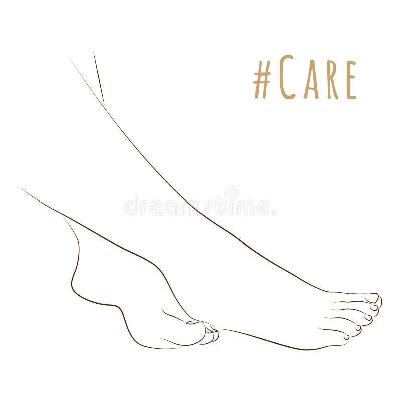 典雅的女性腿、护肤、修脚或者做法剪影  一起剪影脚为秀丽和健康 向量 皇族释放例证