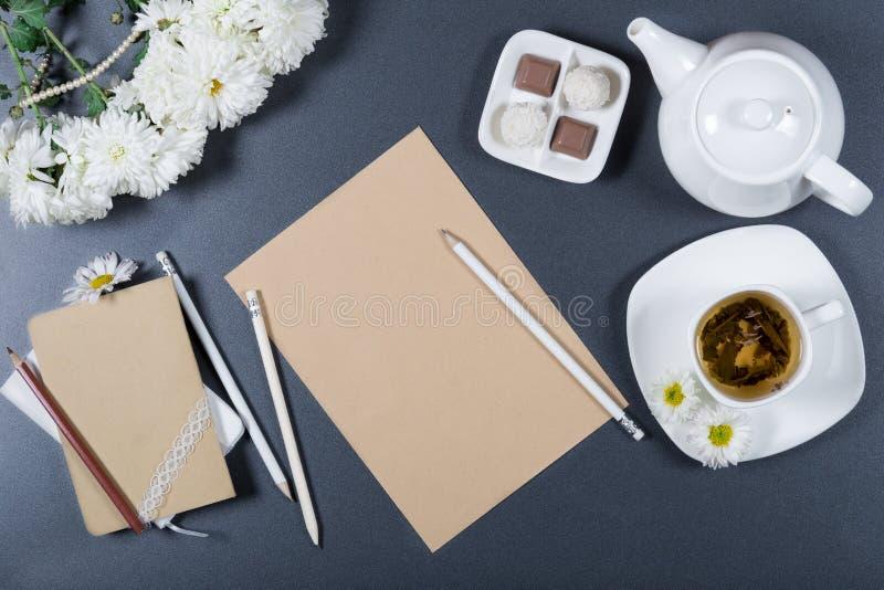 典雅的静物画-棕色工艺纸,白色chrysanth板料  免版税库存图片