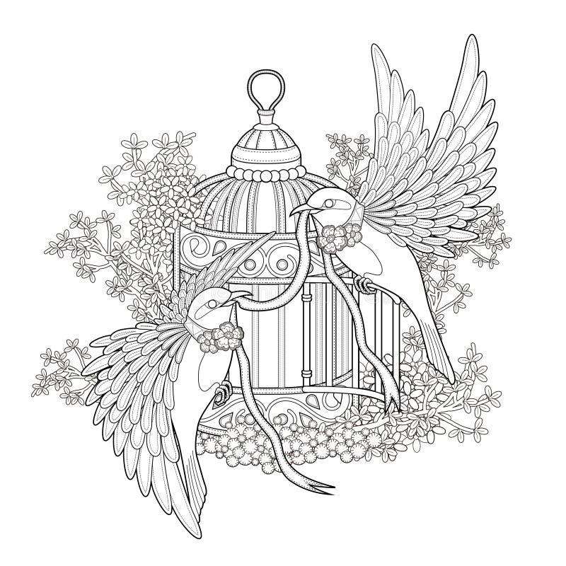 典雅的鸟着色页 皇族释放例证