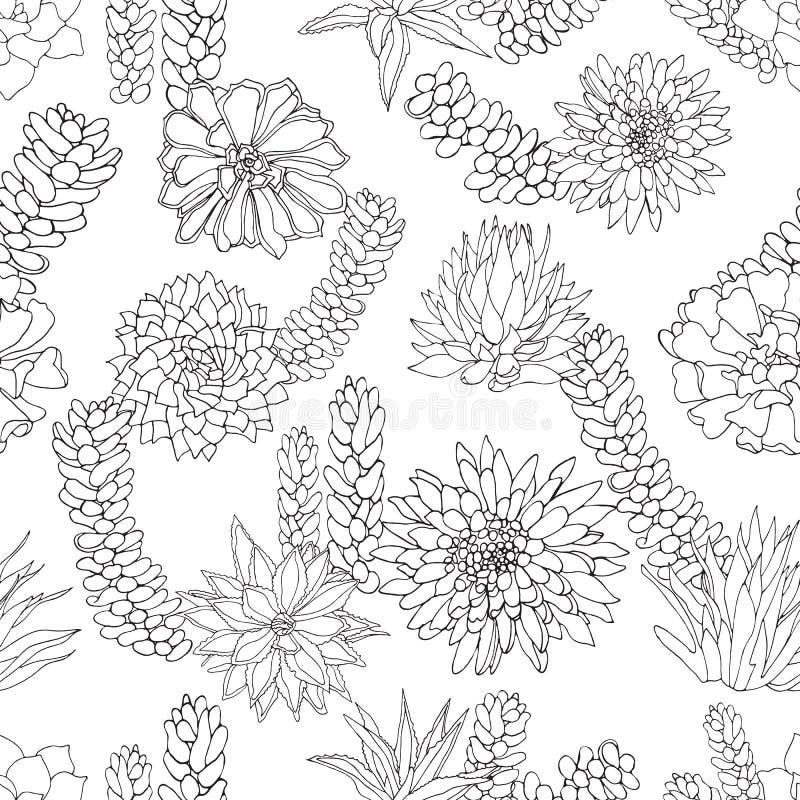 典雅的黑色墨水和空白线路艺术多汁工厂设计或纹理在植物的样式 模式无缝的向量 皇族释放例证