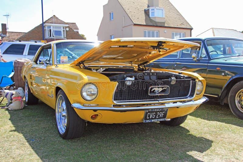 经典Ford Mustang汽车 库存图片