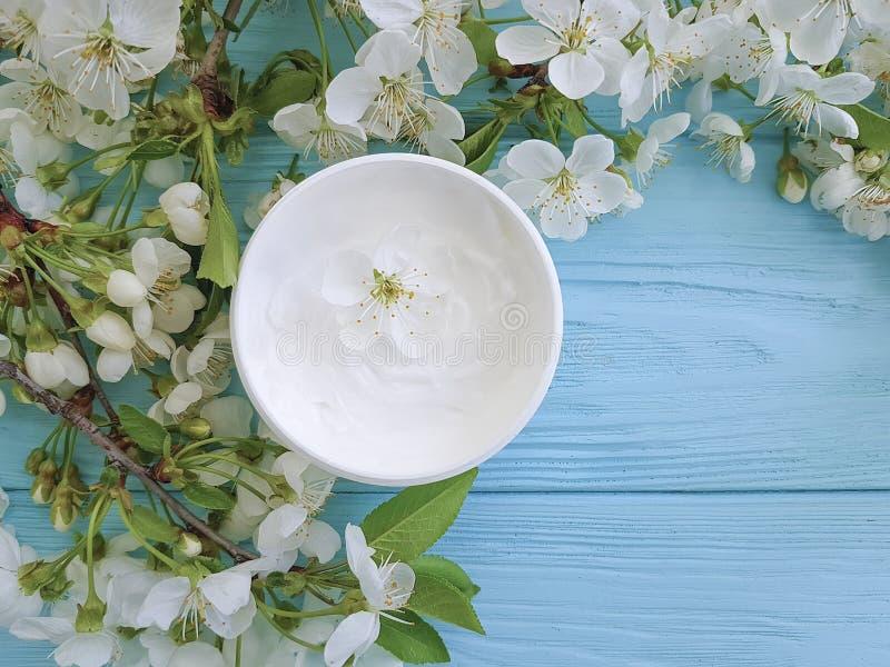 养育有机在蓝色木背景的奶油色化妆不老长寿药治疗健康开花的樱桃 免版税库存照片