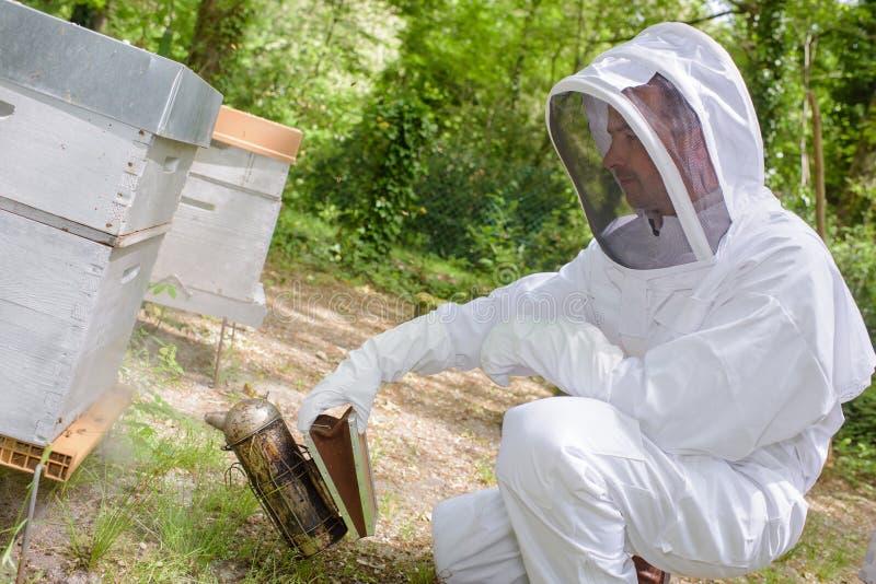 养蜂家在围场 库存图片