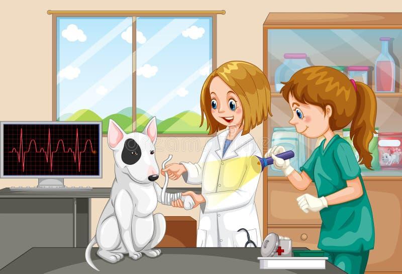 兽医帮助狗的医生和护士 皇族释放例证