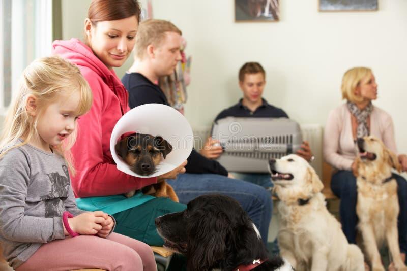 兽医手术的繁忙的候诊室 免版税库存图片