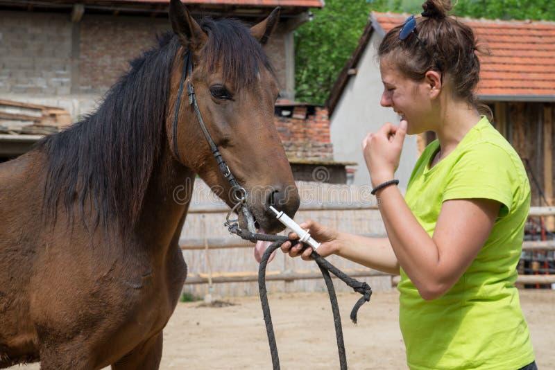 年轻兽医和马 免版税库存照片