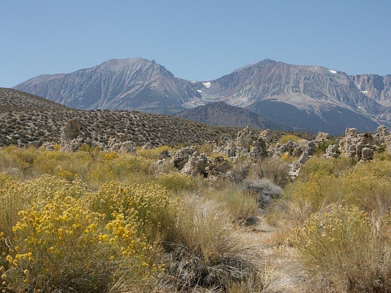 内华达山脉 库存图片