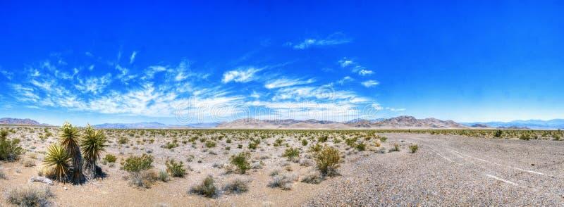 内华达沙漠秀丽 库存图片